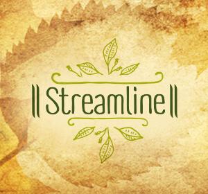 <span>STREAMLINE PHARMA</span><i>→</i>